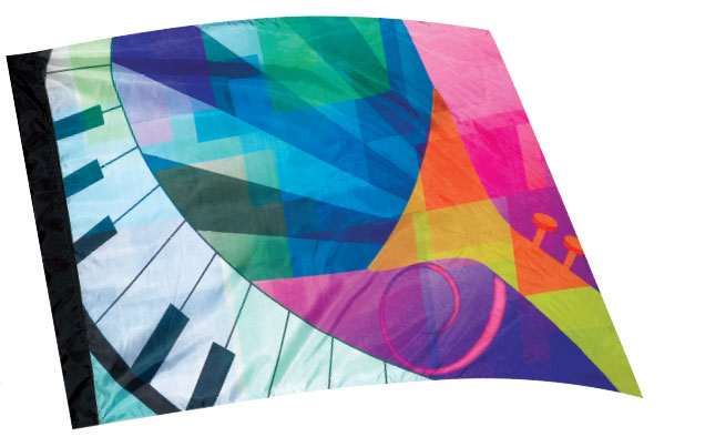Envision Digital Flags: 302
