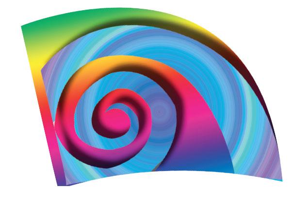 Envision Digital Flags: 205
