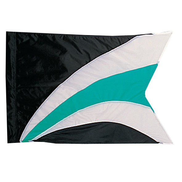 Custom Flags: TM224
