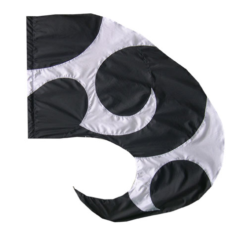 Custom Flags:  SW-161