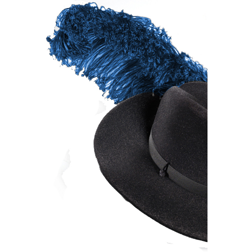 Plumes: Double Thick Ostrich, Bent